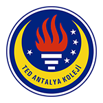 Ted Antalya College